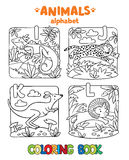 Animals alphabet or ABC. Coloring book. Coloring book or coloring picture of funny iguana, jaguar, kangaroo and lion. Animals zoo alphabet or ABC Vector Illustration