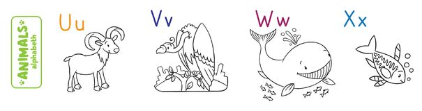 Animals alphabet or ABC. Coloring book. Coloring book or coloring picture of funny urial, vulture, whale and x-ray fish. Animals zoo alphabet or ABC Stock Illustration