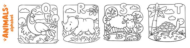 Animals alphabet or ABC. Coloring book set. Coloring book or coloring picture of funny quail, rhino, sheep and turtle. Animals zoo alphabet or ABC royalty free illustration