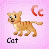 Animals alphabet: C is for Cat Stock Photography