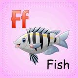 Animals alphabet: F is for fish. Illustration of Animals alphabet: F is for fish Stock Photo