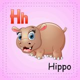 Animals alphabet: H is for Hippo Stock Images