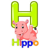 Animals alphabet: H is for Hippo Stock Image