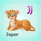 Animals alphabet: J is for Jaguar Royalty Free Stock Photos