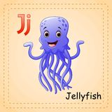 Animals alphabet: J is for Jellyfish Stock Image