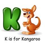 Animals alphabet: K is for Kangaroo stock illustration