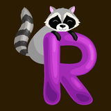 Animals alphabet for kids fish letter R, cartoon fun abc education in preschool, cute children zoo collection learning. Raccoon animal and letter R for kids abc Stock Photos