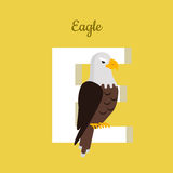Animals Alphabet. Letter - E. Big bald eagle sits on letter. Alphabet learning chart with animal illustration for letter and animal name. Vector zoo alphabet stock illustration