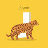 Animals Alphabet. Letter - J. Spotted jaguar near letter. Alphabet learning chart with animal illustration for letter and animal name. Vector zoo alphabet with Stock Illustration