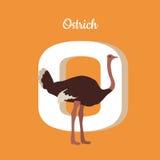 Animals Alphabet. Letter - O Stock Photos