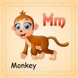 Animals alphabet: M is for Monkey. Illustration of  Animals alphabet: M is for Monkey Stock Image