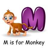 Animals alphabet: M is for Monkey. Illustration of  Animals alphabet: M is for Monkey Royalty Free Stock Photo