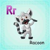 Animals alphabet: R is for Raccoon. Illustration of Animals alphabet: R is for Raccoon vector illustration
