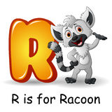 Animals alphabet: R is for Raccoon. Illustration of  Animals alphabet: R is for Raccoon Royalty Free Stock Photos