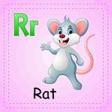 Animals alphabet: R is for Rat. Illustration of Animals alphabet: R is for Rat royalty free illustration