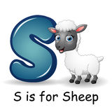 Animals alphabet: S is for Sheep Stock Image