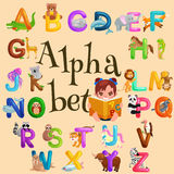 Animals alphabet set for kids abc education in preschool. Cute animals letters english alphabet collection. Cartoon animals alphabet set for learning letters royalty free illustration