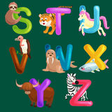 Animals alphabet set for kids abc education in preschool. Cute animals letters english alphabet collection. Cartoon animals alphabet set for learning letters Vector Illustration