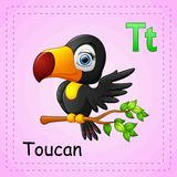 Animals alphabet: T is for Toucan. Illustration of Animals alphabet: T is for Toucan Stock Illustration
