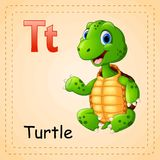 Animals alphabet: T is for Turtle. Illustration of Animals alphabet: T is for Turtle Royalty Free Stock Images