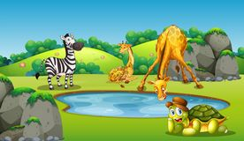 Animals around pond scene. Illustration stock illustration