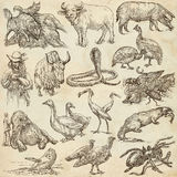 Animals around the World - An hand drawn full sized pack. Line a Royalty Free Stock Images