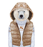 Animals as a human. Polar Bear in down vest and sweater. Hand-drawn illustration, digitally colored Stock Image