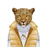 Animals as a human. Portrait of Leopard in down vest and sweater. Royalty Free Stock Photo