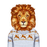 Animals as a human. Portrait of Lion in sweater. Hand-drawn illustration, digitally colored Stock Photo