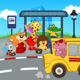 Animals At Bus Stop Waiting School Bus Stock Image