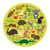 Animals Australia. Echidna Platypus ostrich Emu Royalty Free Stock Photo