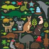 Animals Australia: Echidna Platypus ostrich Royalty Free Stock Image