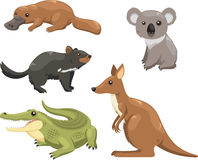 Animals australia 1. Set of australian animals  cartoons Royalty Free Stock Images