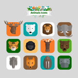 Animals Avatars Royalty Free Stock Photos