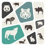Animals background Stock Photography