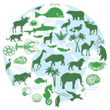 Animals and biodiversity stock illustration