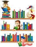 Animals and books. Animals reading books on the shelf Vector Illustration