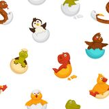 Animals born from eggs, eggshells and reptiles seamless pattern vector. Fluffy chicken, penguin and dragon, snake and alligator sitting in shell. Small newborn vector illustration