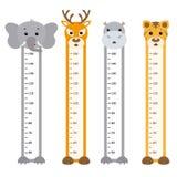 Animals. Bumper children meter wall. Animals Stock Images