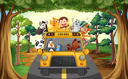 Animals and bus Stock Images