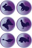 Animals button Royalty Free Stock Photography