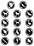 Animals in the buttons Royalty Free Stock Images