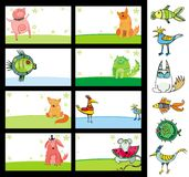Animals cards. Stock Images
