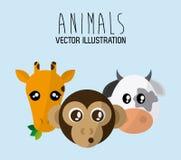 Animals cartoon design. Animal concept with cartoon icons design, vector illustration 10 eps graphic Royalty Free Stock Photo