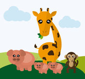 Animals cartoon design. Animal concept with cartoon icons design, vector illustration 10 eps graphic Royalty Free Stock Image