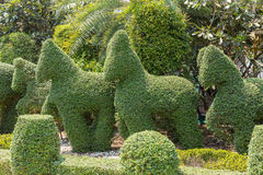 Animals carved from bushes Royalty Free Stock Photography