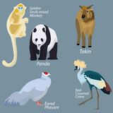 Animals of China in simple design Stock Photography