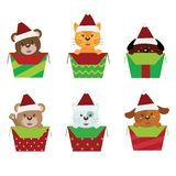 Animals christmas Royalty Free Stock Photo