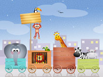 Animals circus Stock Photo