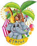 Animals in the circus royalty free illustration